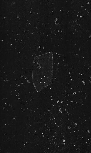 sequences - transient form album cover