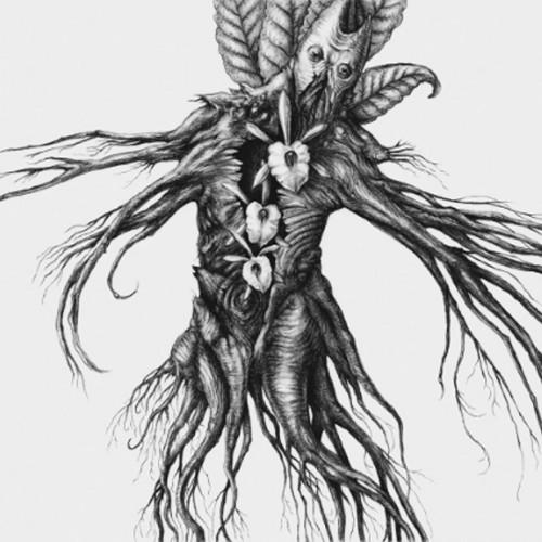 Botanist - IV-Mandragora album cover