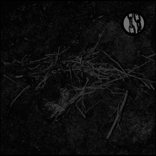 ruin lust album cover
