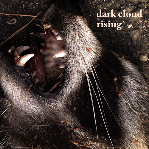 dark-cloud-rising-mix-album-cover-medium