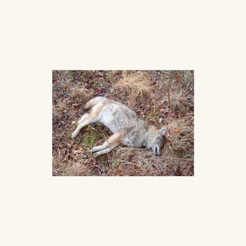 foie gras - innermost shrine heavily gilded album cover