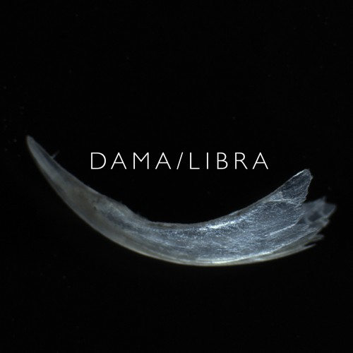 dama libra - claw album cover