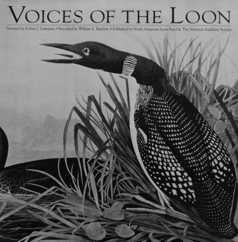 voices of the loon album cover