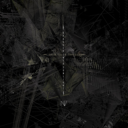 dragged into sunglight and gnaw their tongues - nv album cover