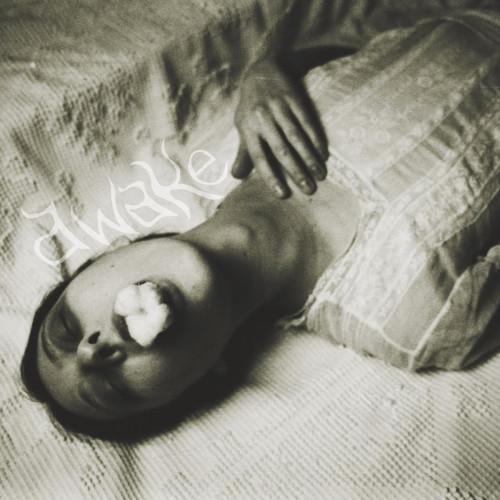 high aura'd and mike shiflet - awake album cover