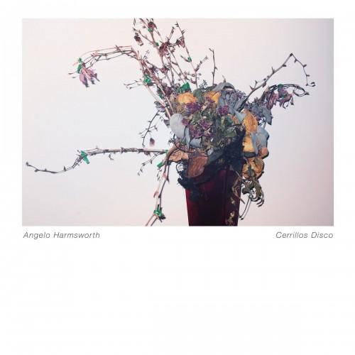 angelo harmsworth - cerrillos disco album cover