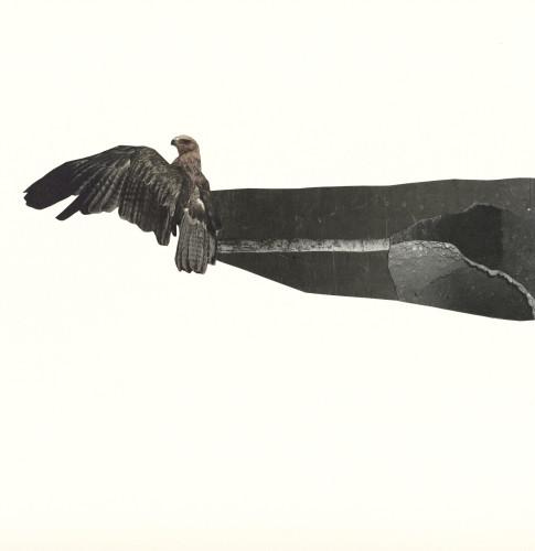 Dreamboat album cover